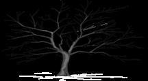 treeunnamed