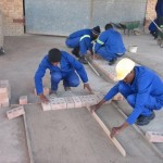 Orphaned youth build houses in Swaziland